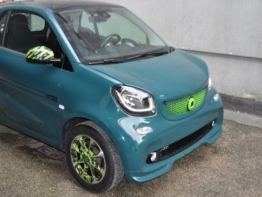 SMART FORTWO GREEN HELL